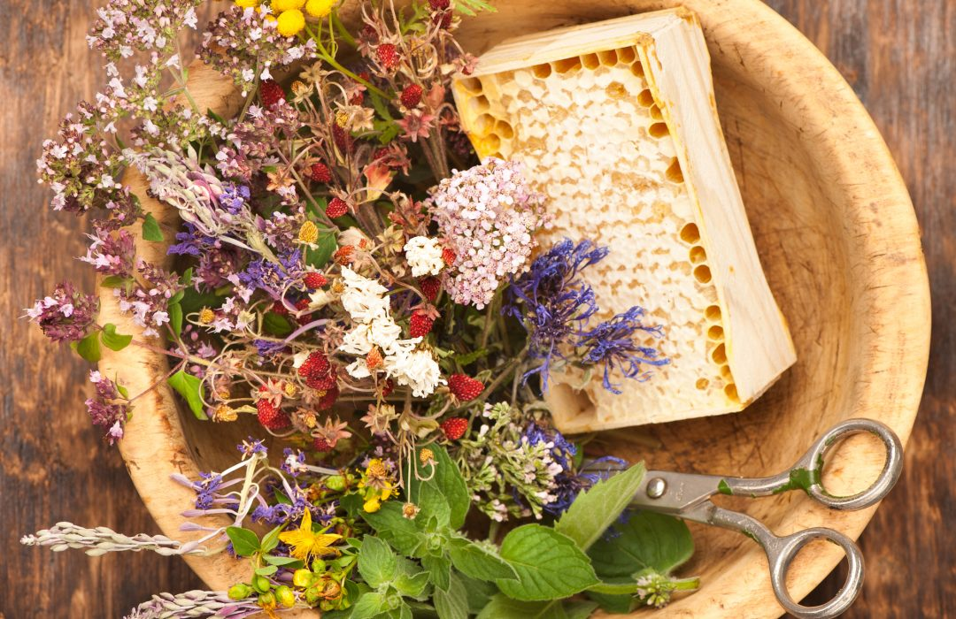 La naturopathie, un art de vivre